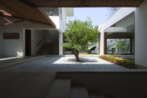 1-Central-tree-and-pebble-Courtyard