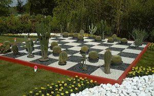 cool_garden_design